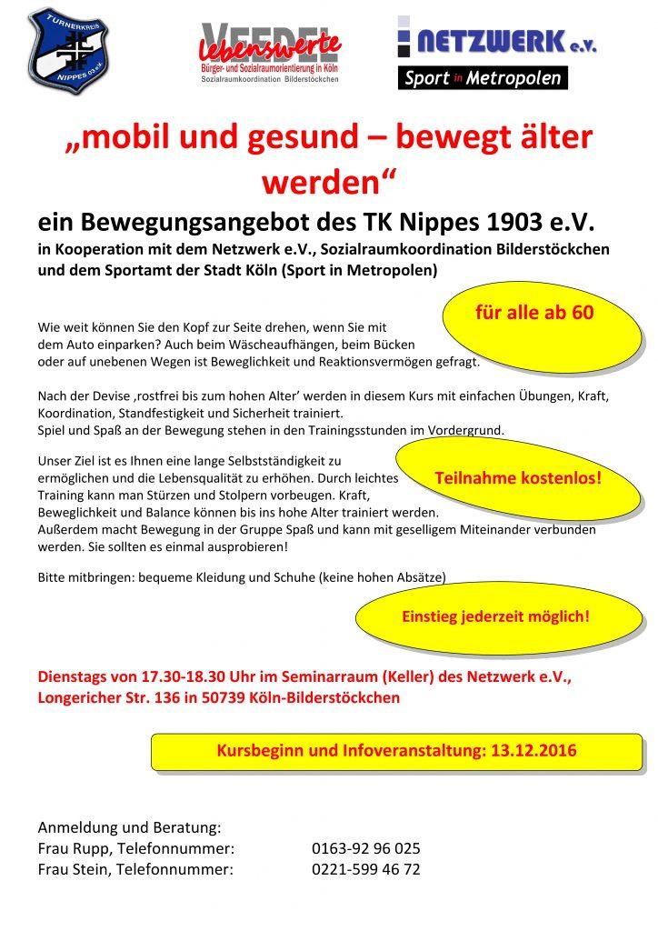 poster-zum-kursangebot-netzwerk-e-v-221116